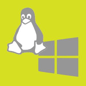Choose between Linux or Windows operating systems for your dedicated server plan with iDigLocal