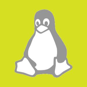 VPS linux servers available for you hosting needs