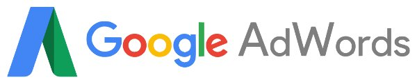 Google Adwods campaign management company